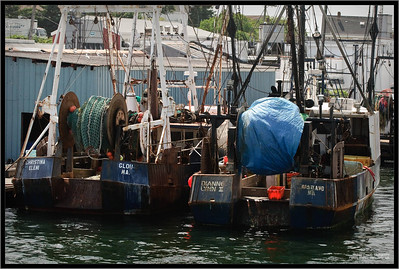 Fishing boats in Gloucester, MA
